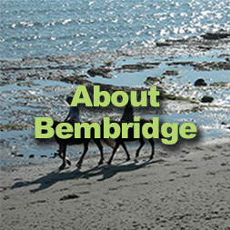 About Bembridge